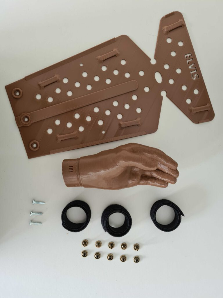 The customized prosthesis for Elvis